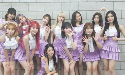 IZ*ONE The Show Secret Story of the Swan.